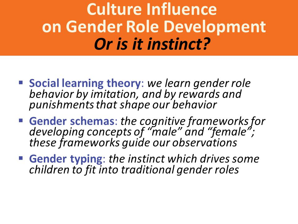 Culture Influence on Gender Role Development Or is it instinct