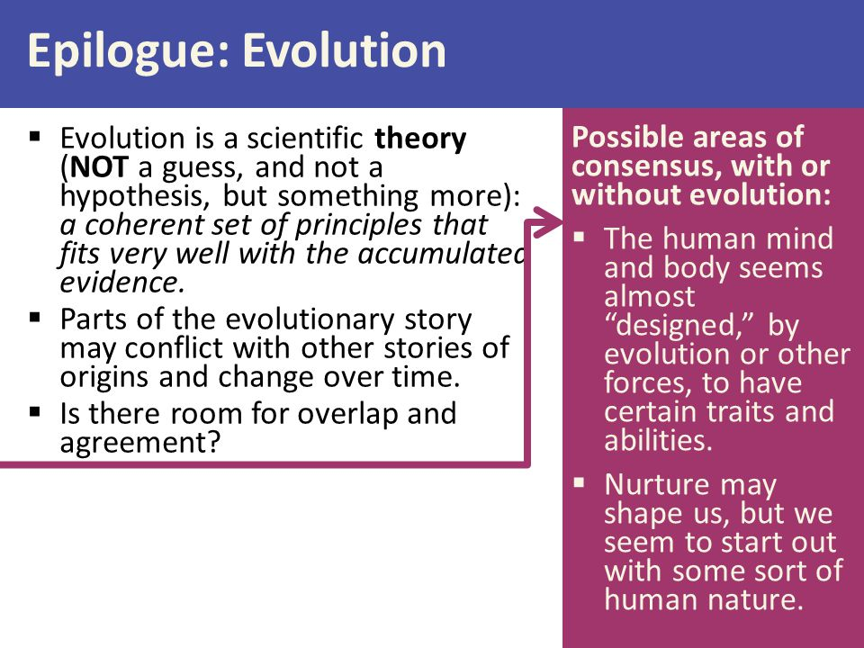 Epilogue: Evolution Possible areas of consensus, with or without evolution: