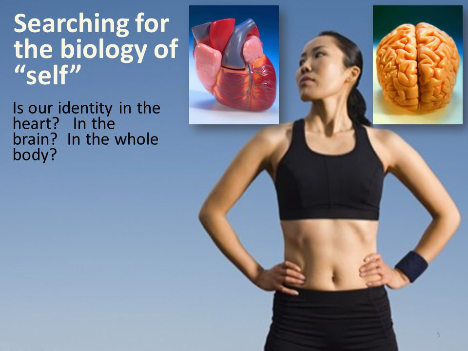Searching for the biology of self