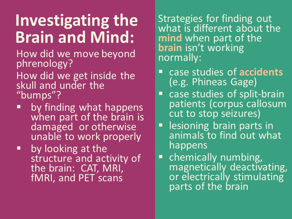 Investigating the Brain and Mind: