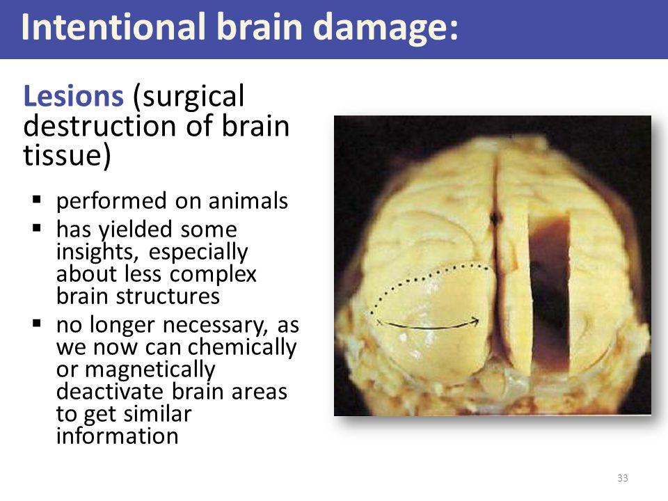 Intentional brain damage: