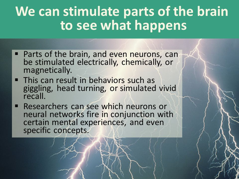 We can stimulate parts of the brain to see what happens