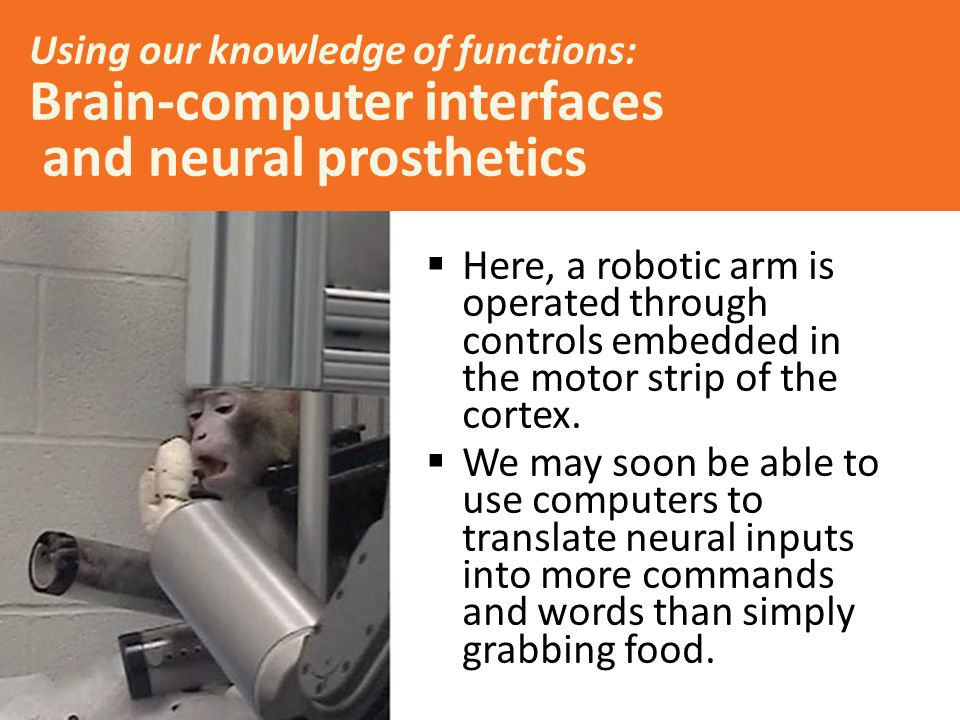 Using our knowledge of functions: Brain-computer interfaces and neural prosthetics