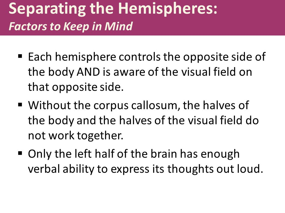 Separating the Hemispheres: Factors to Keep in Mind