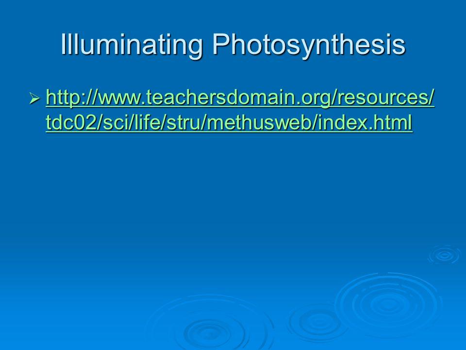 Illuminating Photosynthesis