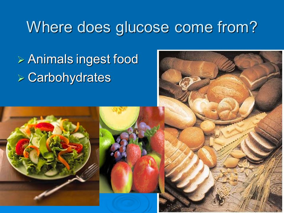 Where does glucose come from