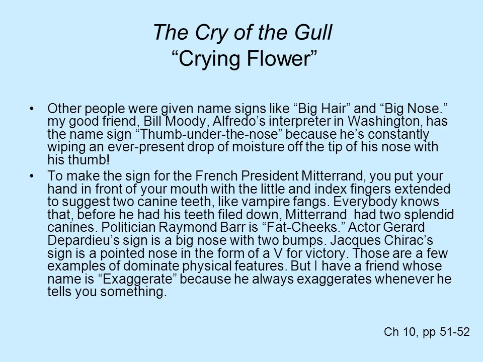 The Cry of the Gull Crying Flower