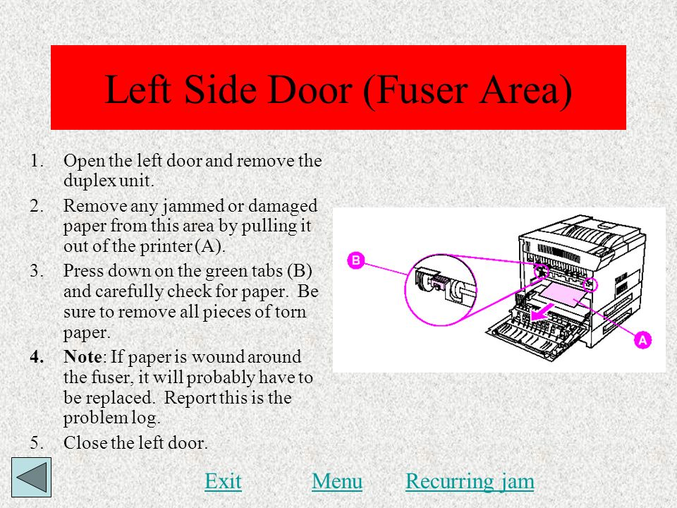 Left Side Door (Fuser Area)