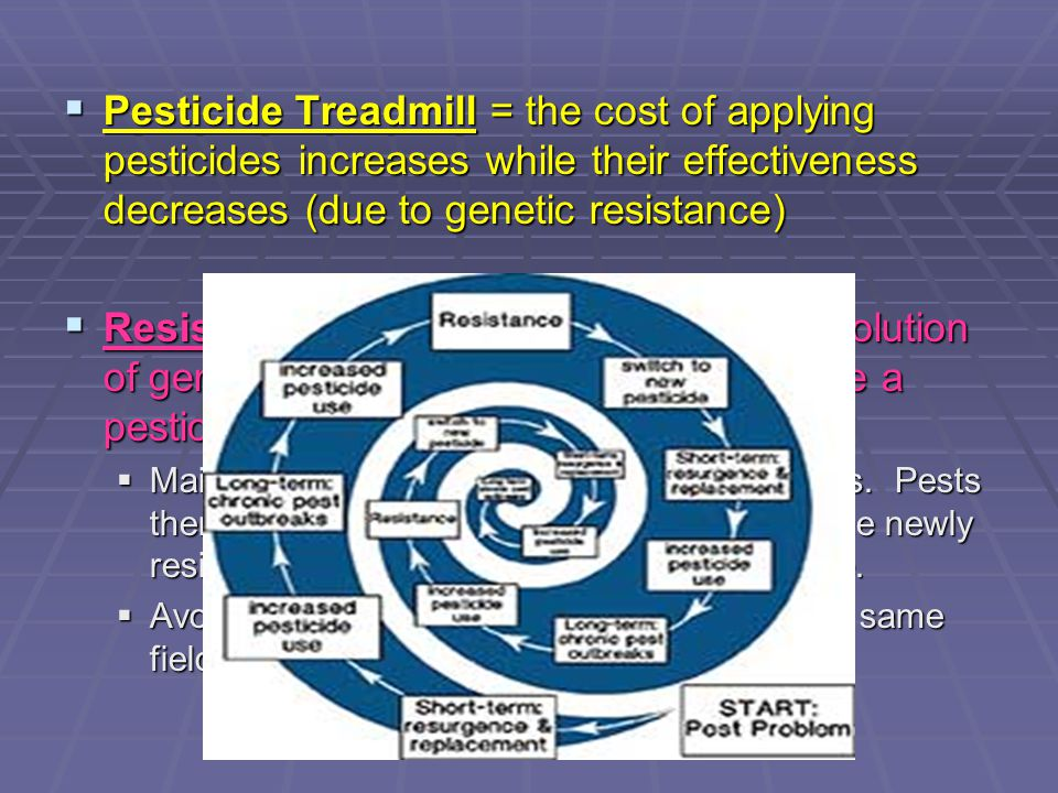 Pesticide Treadmill = the cost of applying pesticides increases while their effectiveness decreases (due to genetic resistance)