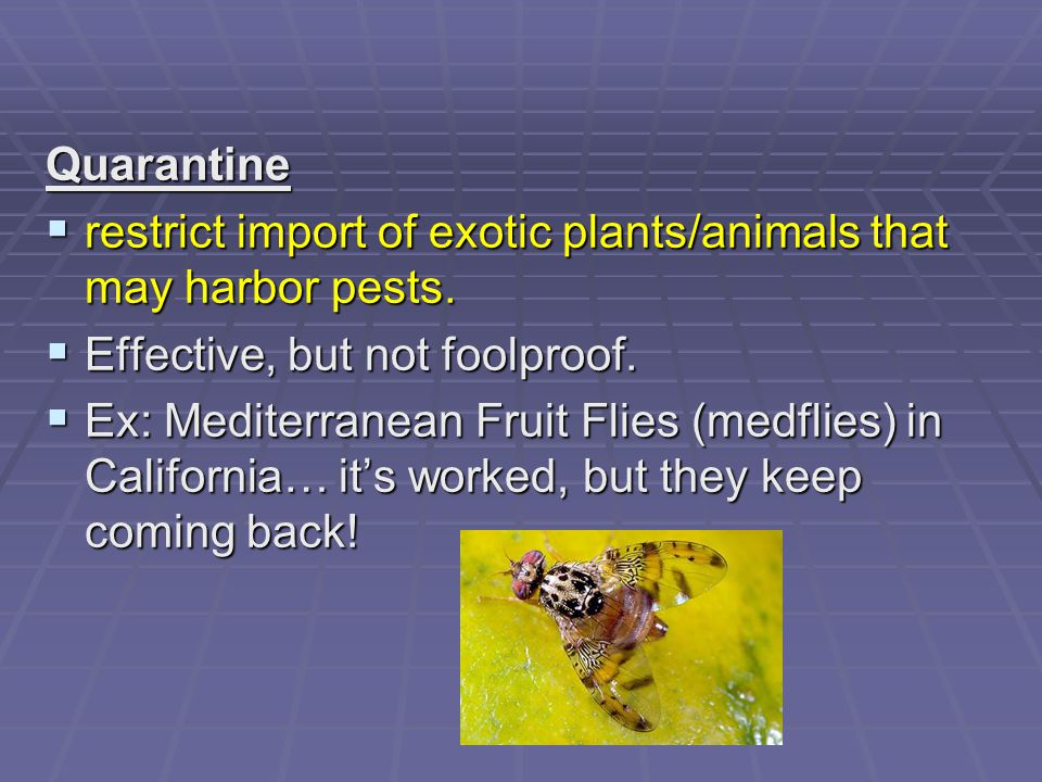 Quarantine restrict import of exotic plants/animals that may harbor pests. Effective, but not foolproof.