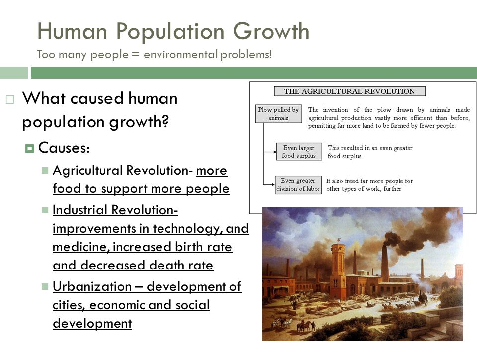 Human Population Growth Too many people = environmental problems!
