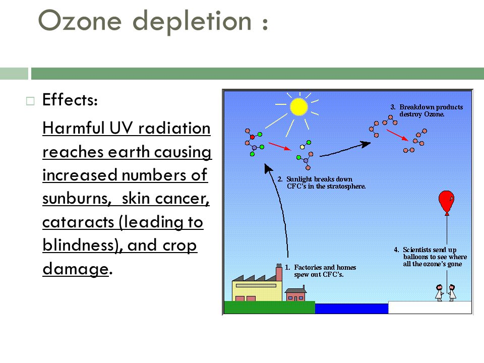 Ozone depletion : Effects: