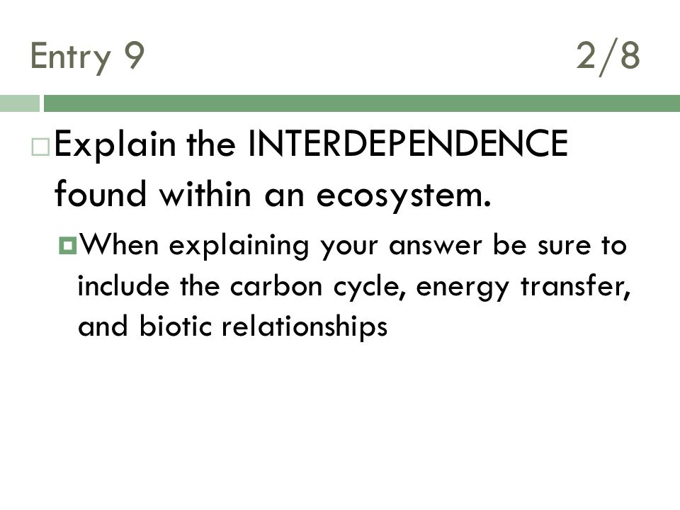 Explain the INTERDEPENDENCE found within an ecosystem.