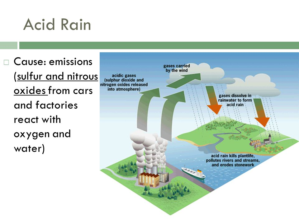 Acid Rain Cause: emissions (sulfur and nitrous oxides from cars and factories react with oxygen and water)