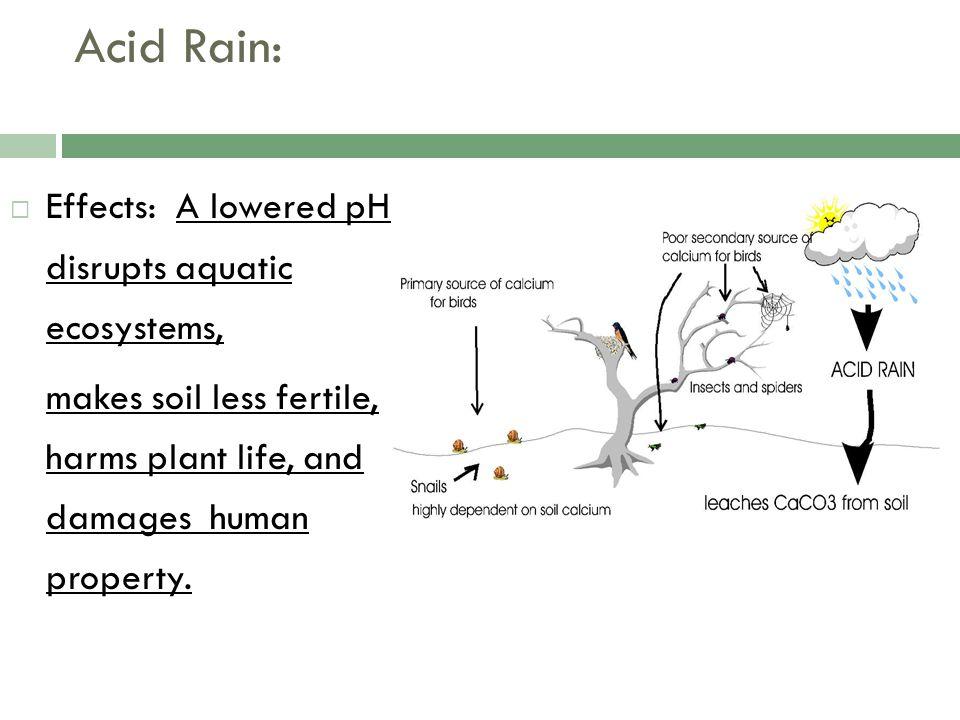 Acid Rain: Effects: A lowered pH disrupts aquatic ecosystems,