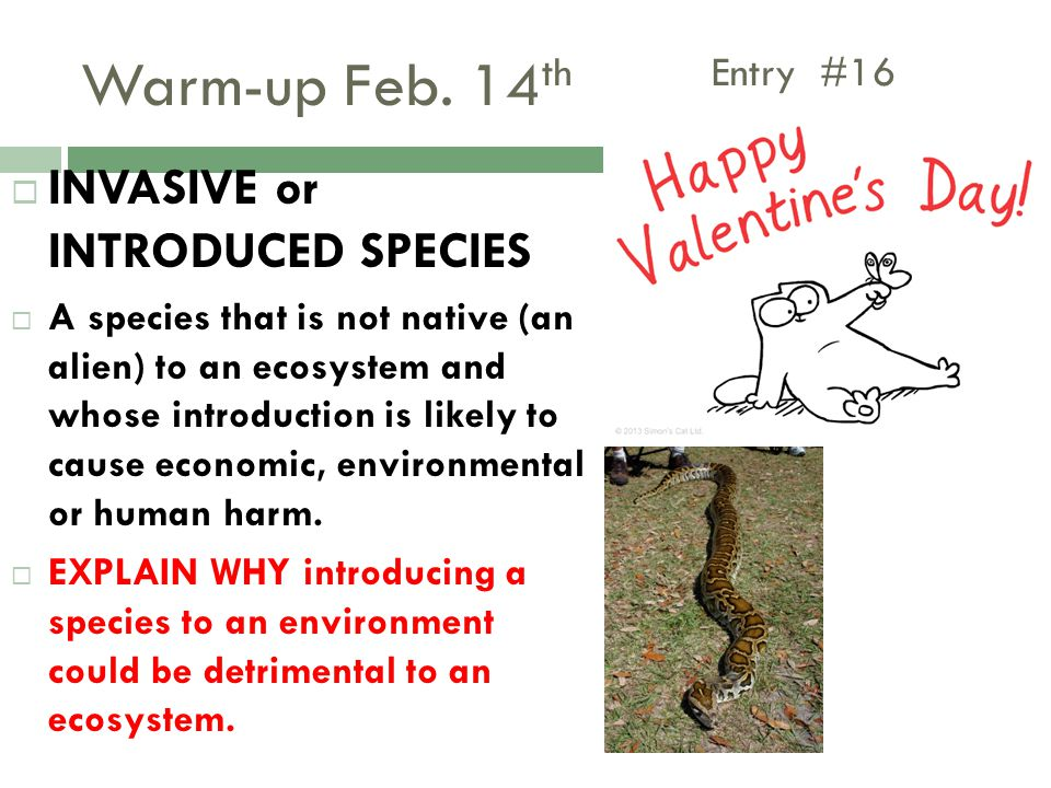 Warm-up Feb. 14th Entry #16 INVASIVE or INTRODUCED SPECIES