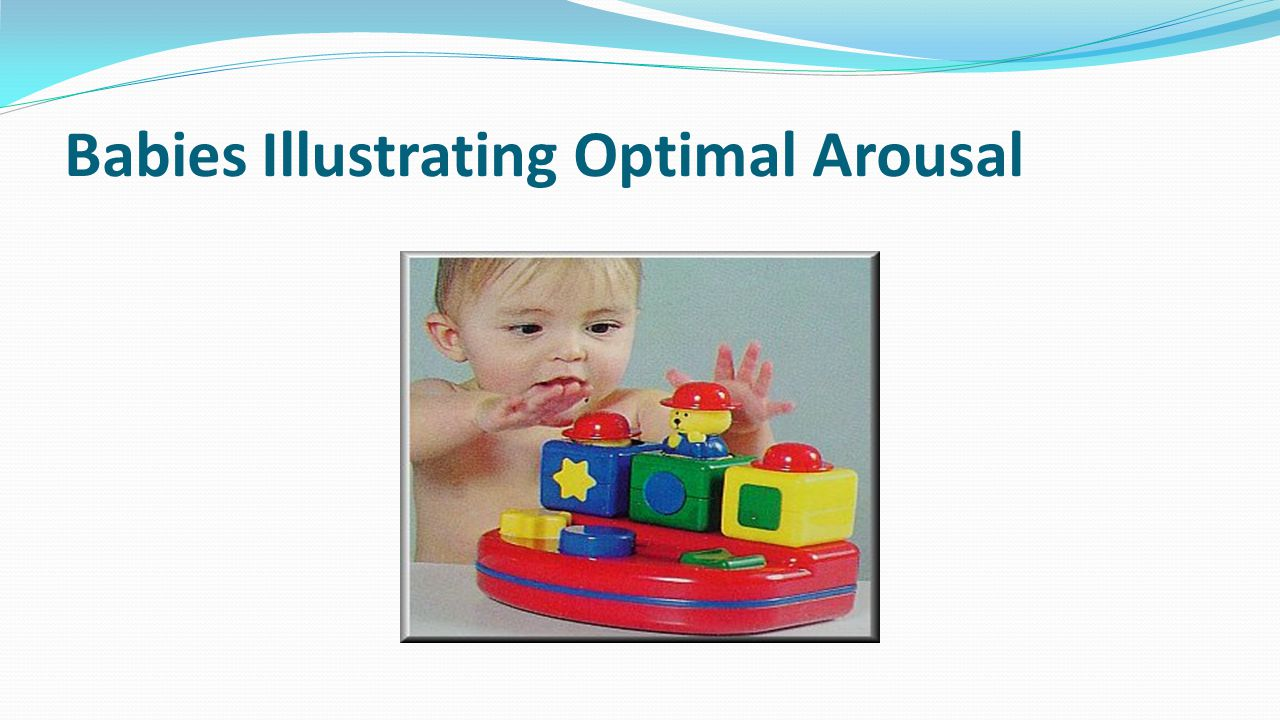 Babies Illustrating Optimal Arousal