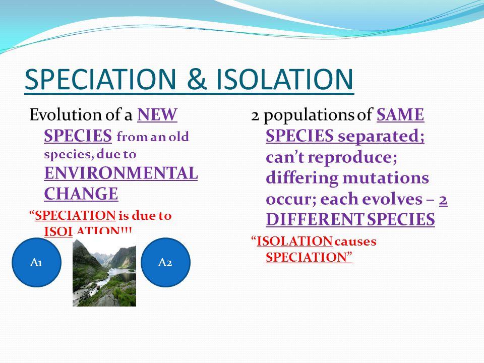 SPECIATION & ISOLATION