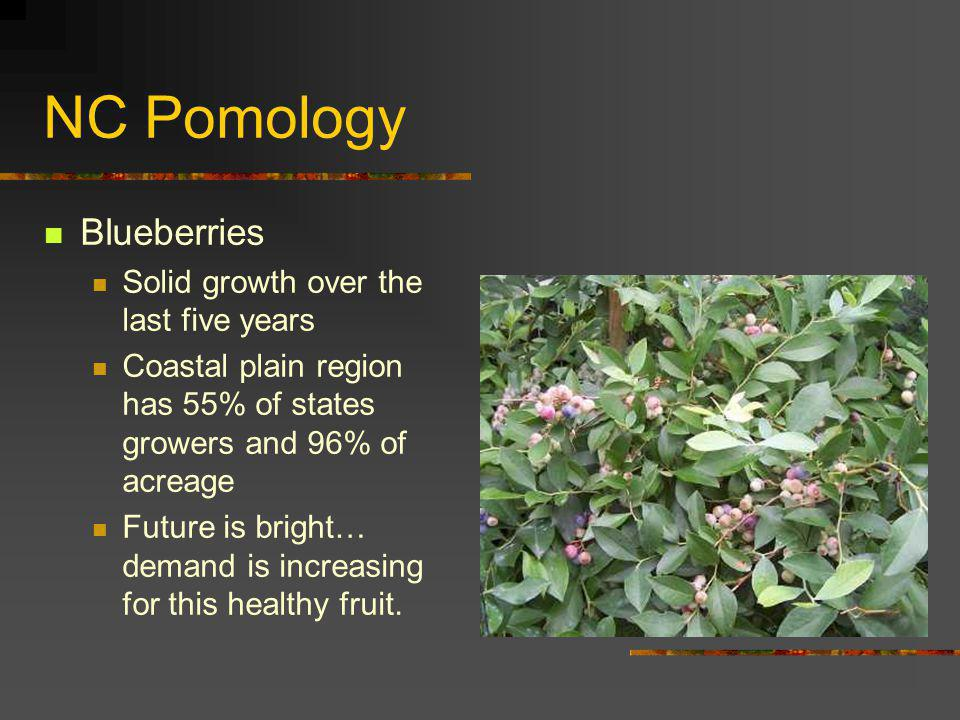 NC Pomology Blueberries Solid growth over the last five years