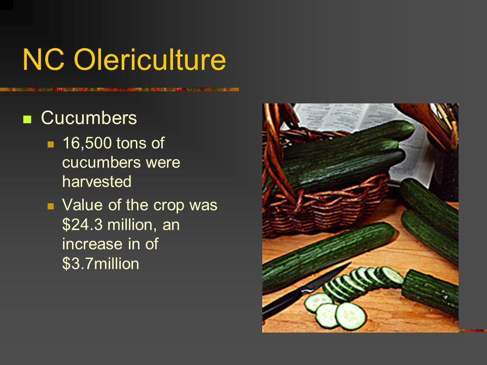 NC Olericulture Cucumbers 16,500 tons of cucumbers were harvested