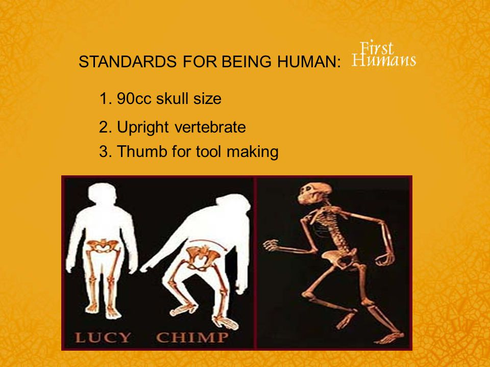 STANDARDS FOR BEING HUMAN: