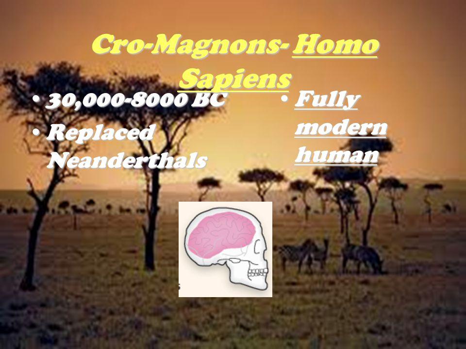 Cro-Magnons- Homo Sapiens