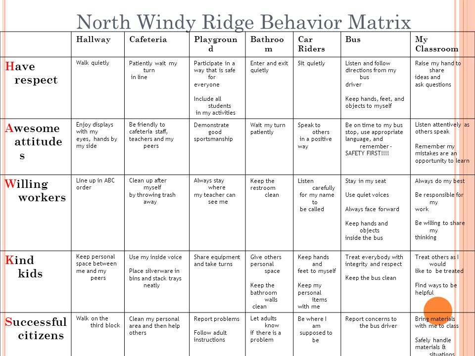 North Windy Ridge Behavior Matrix