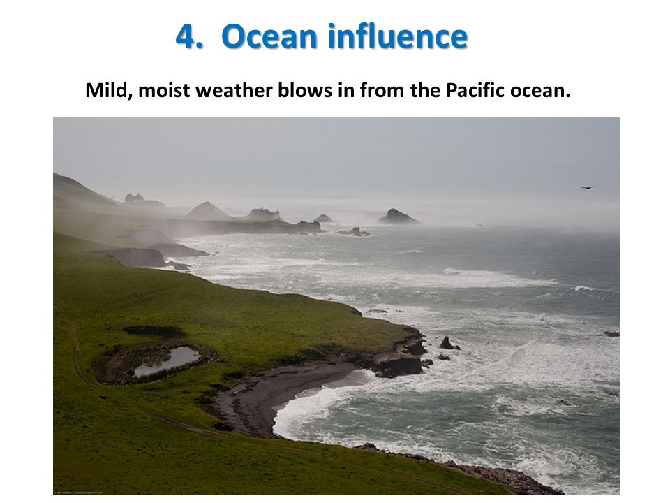 4. Ocean influence Mild, moist weather blows in from the Pacific ocean.