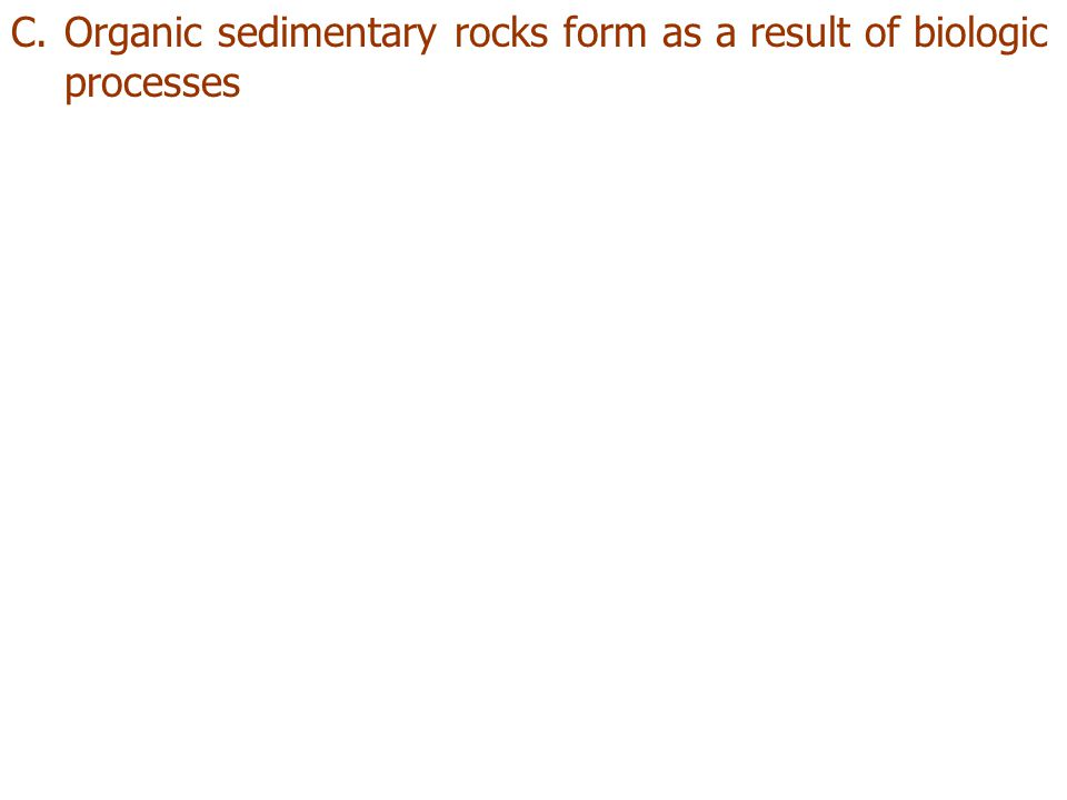 Organic sedimentary rocks form as a result of biologic processes