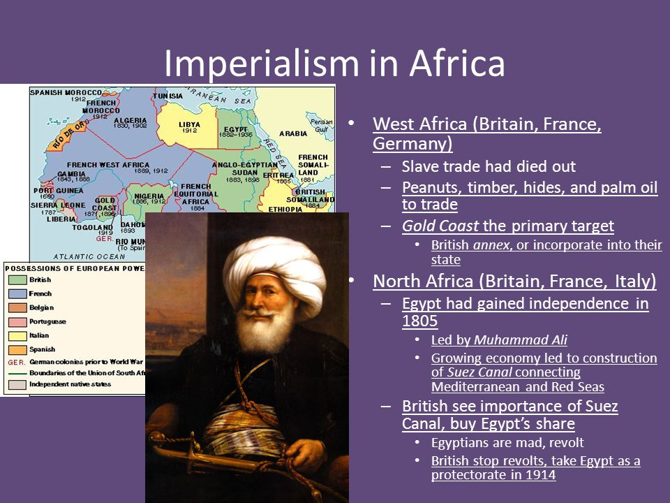 Imperialism in Africa West Africa (Britain, France, Germany)