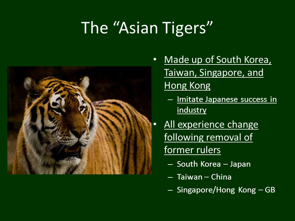 The Asian Tigers Made up of South Korea, Taiwan, Singapore, and Hong Kong. Imitate Japanese success in industry.