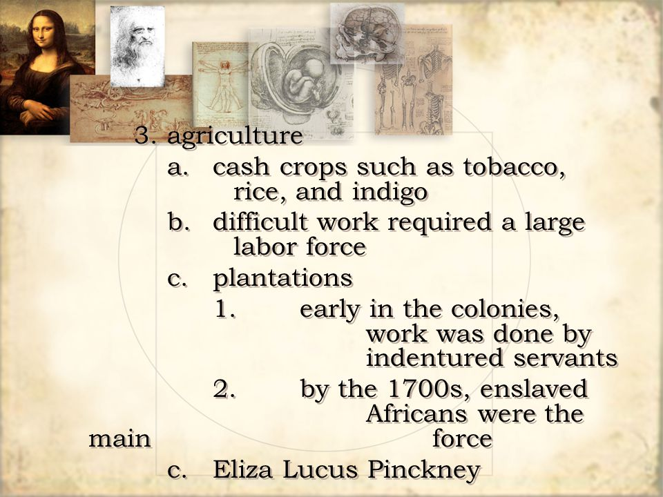 a. cash crops such as tobacco, rice, and indigo