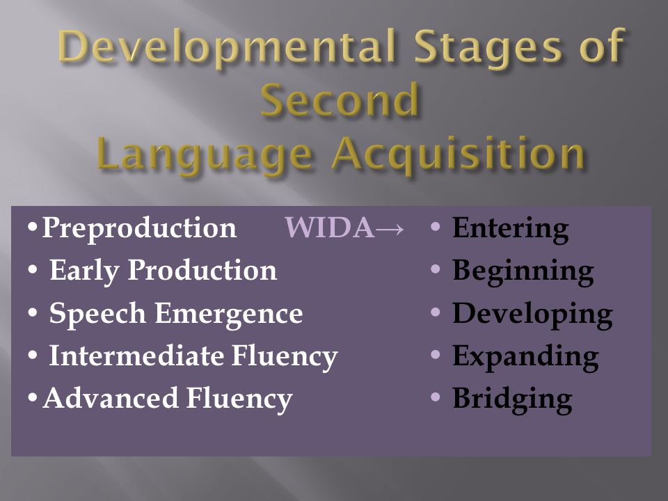 Developmental Stages of Second Language Acquisition
