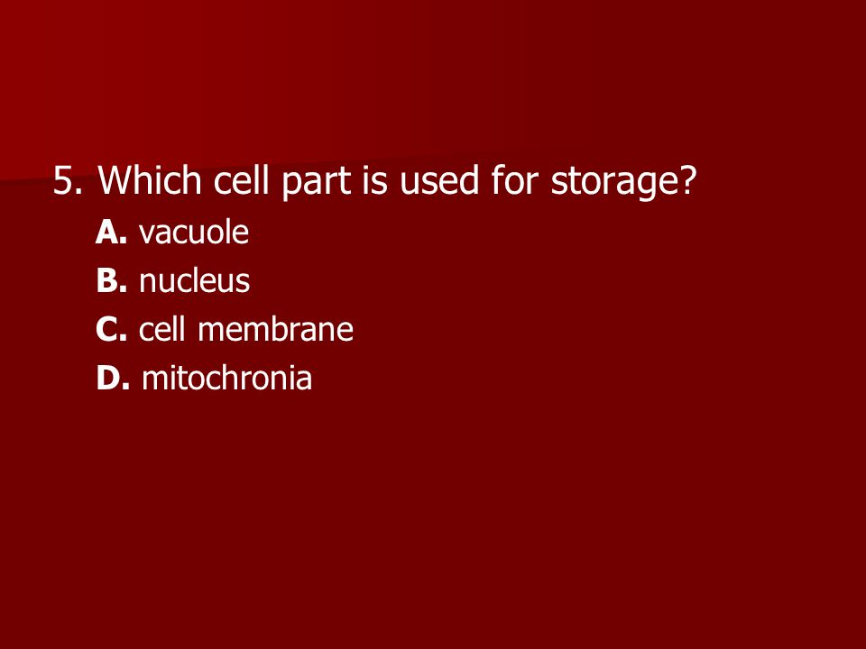 5. Which cell part is used for storage