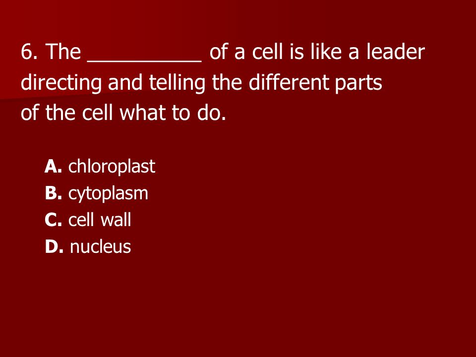 6. The __________ of a cell is like a leader