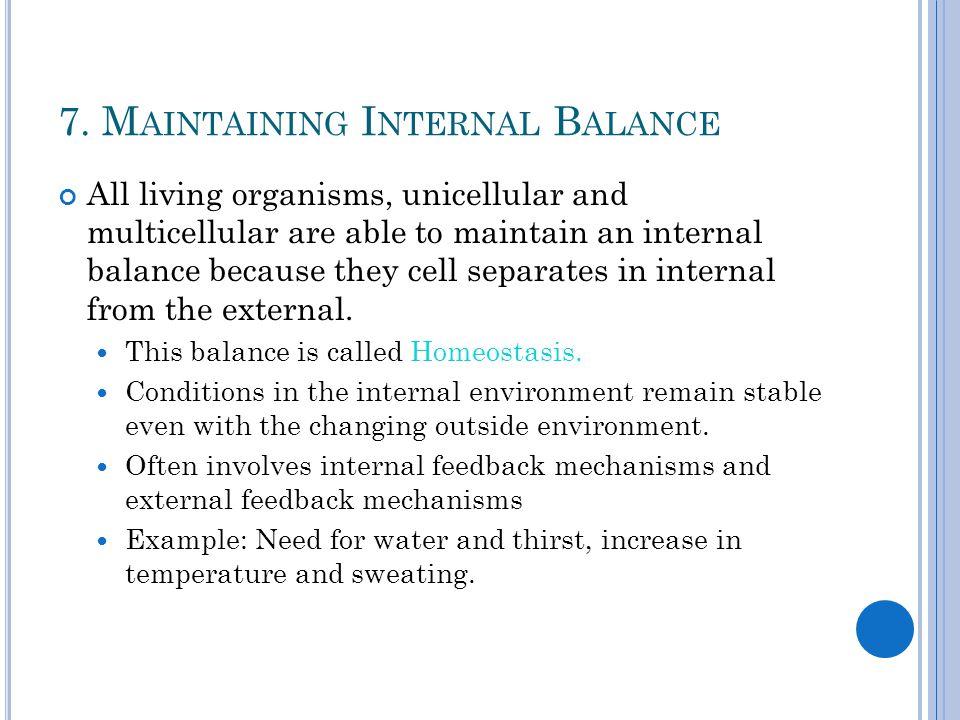 7. Maintaining Internal Balance