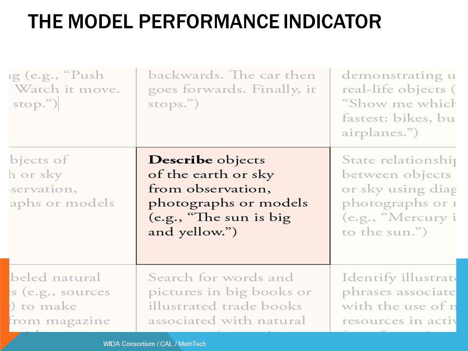 The Model Performance Indicator Language Function
