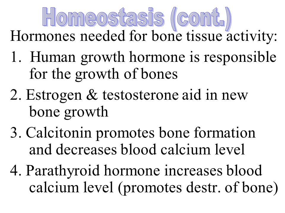 Hormones needed for bone tissue activity: