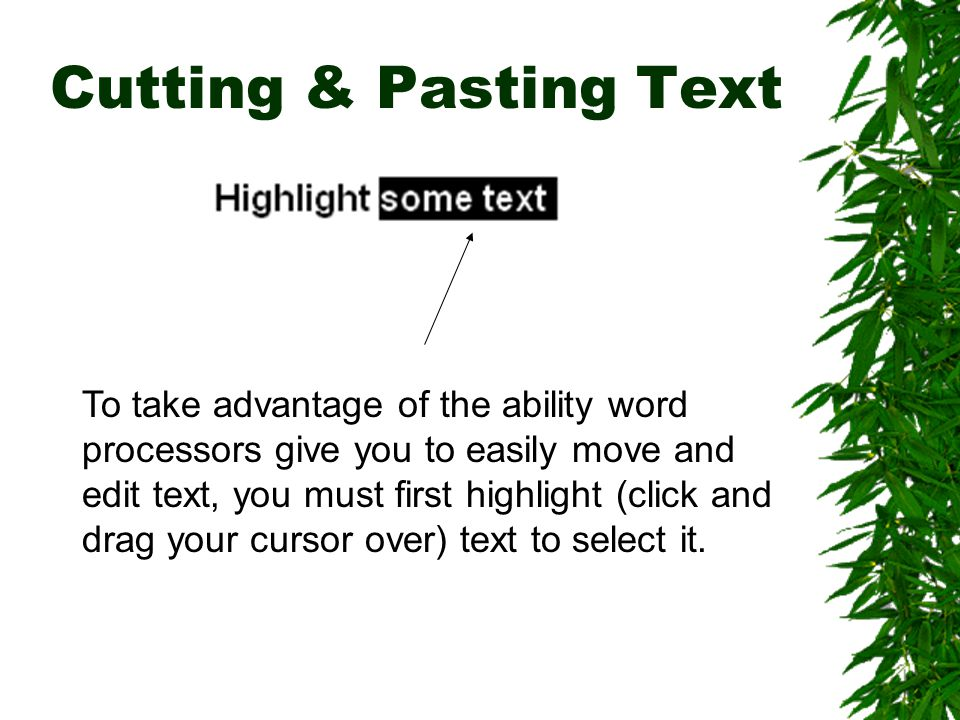 Cutting & Pasting Text