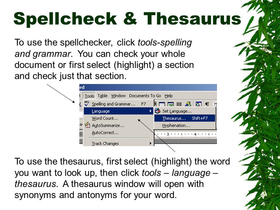Spellcheck & Thesaurus