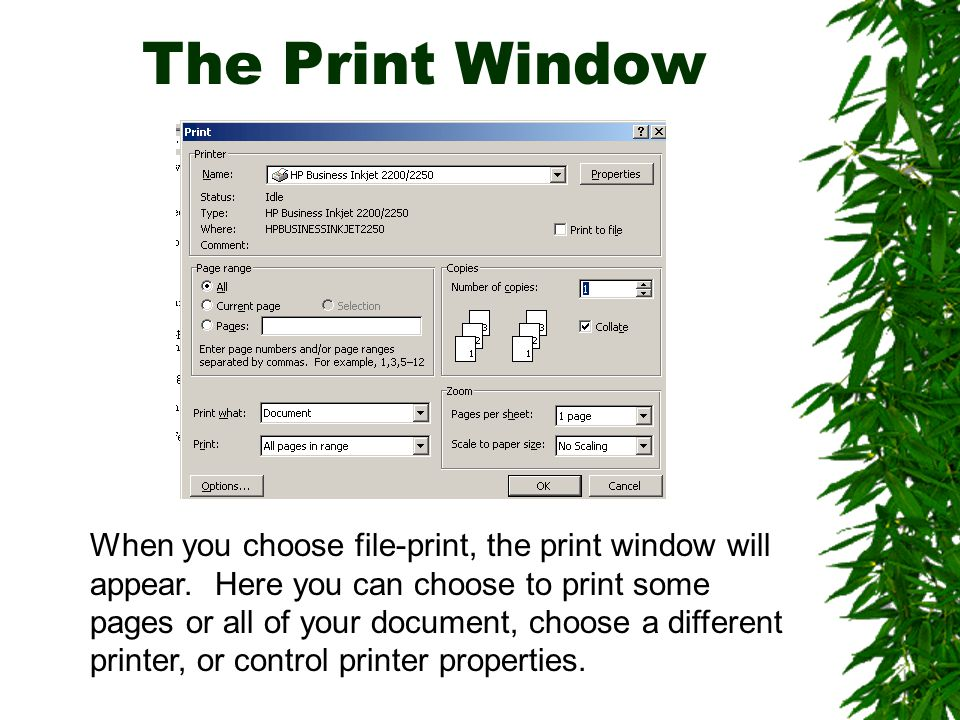 The Print Window