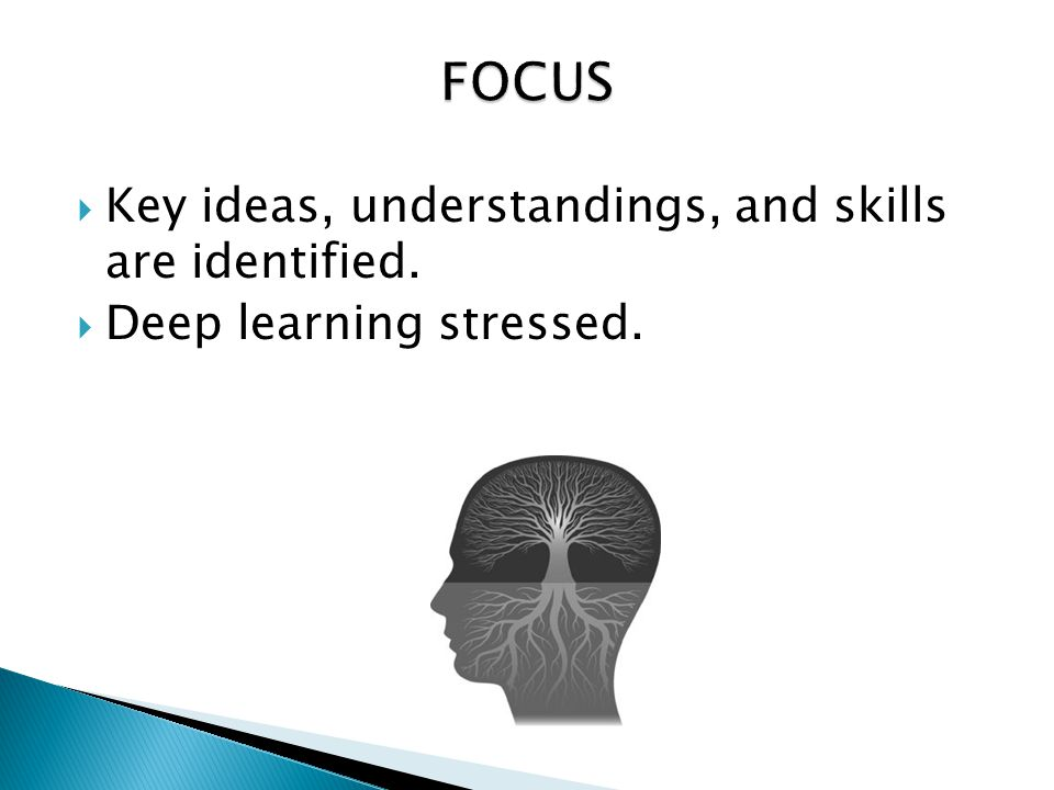 FOCUS Key ideas, understandings, and skills are identified.