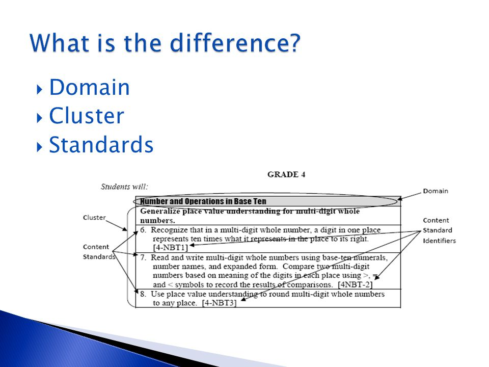 What is the difference Domain Cluster Standards