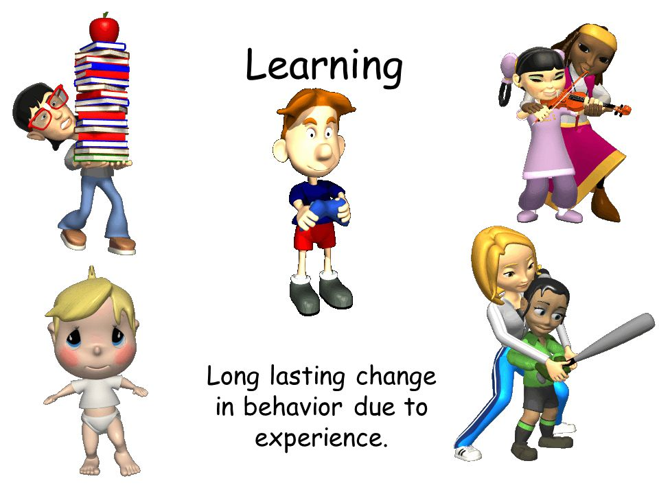 Long lasting change in behavior due to experience.