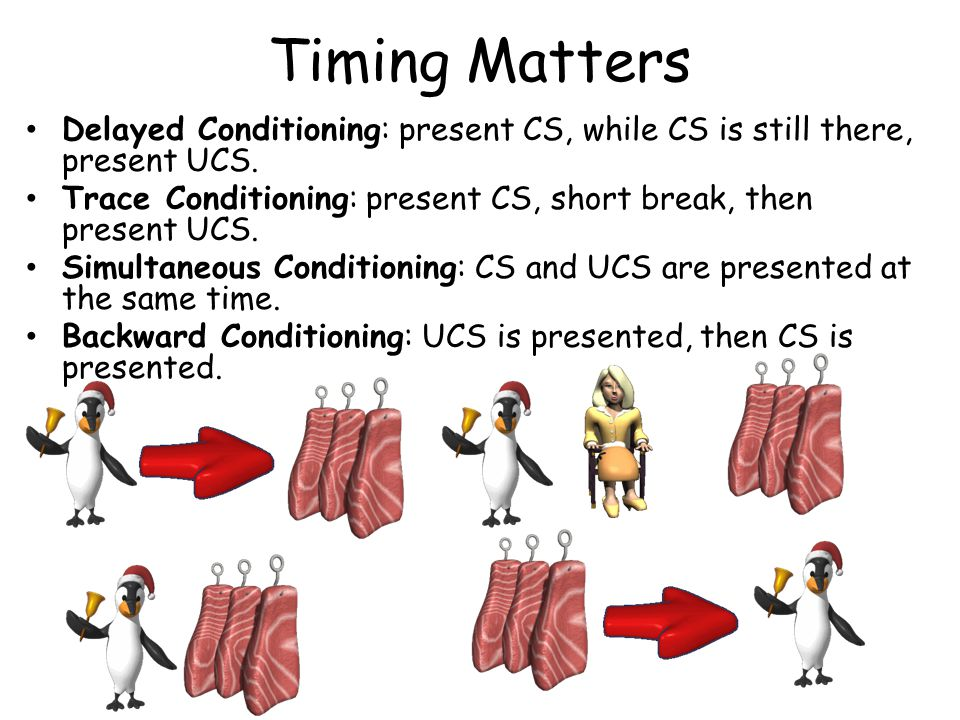 Timing Matters Delayed Conditioning: present CS, while CS is still there, present UCS.