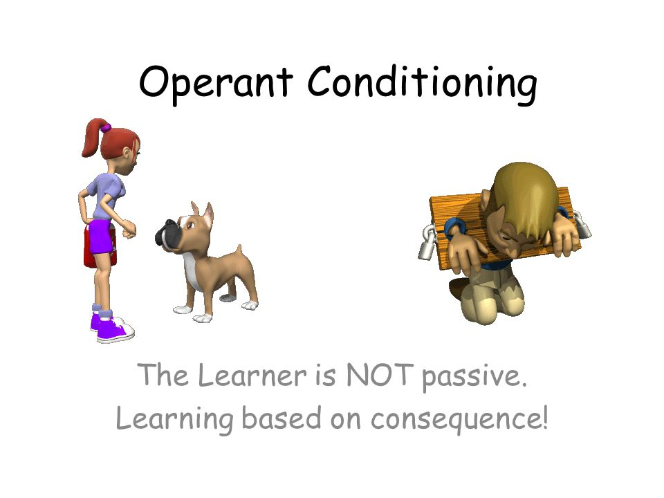 The Learner is NOT passive. Learning based on consequence!