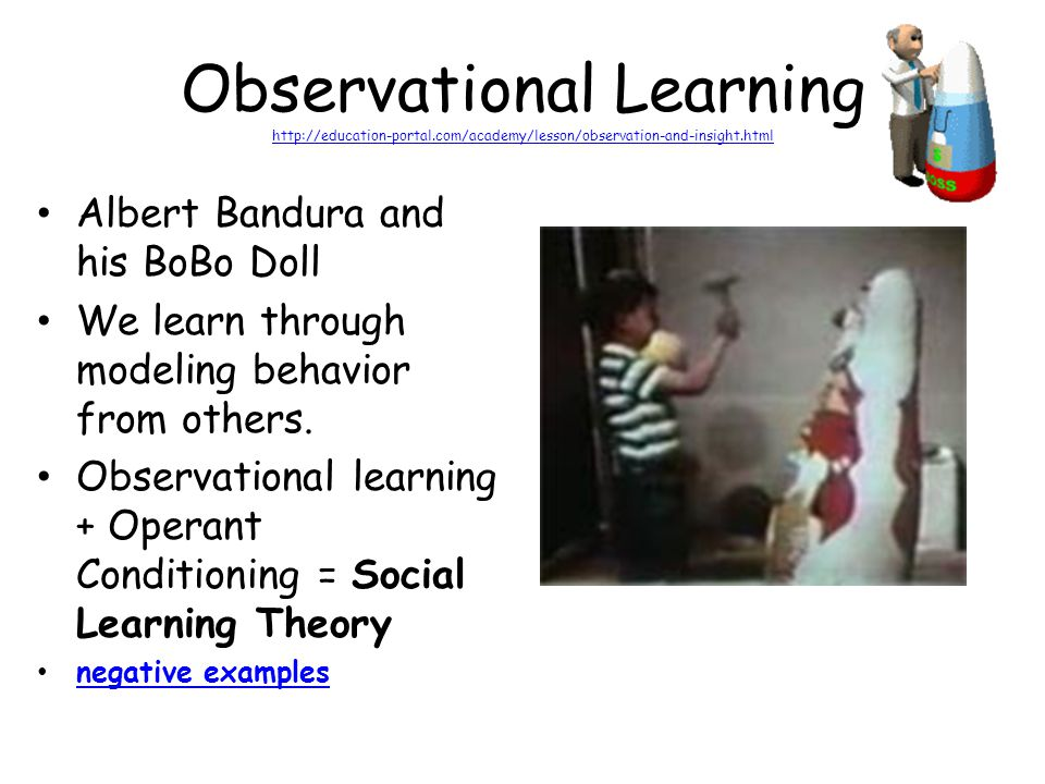 Observational Learning http://education-portal