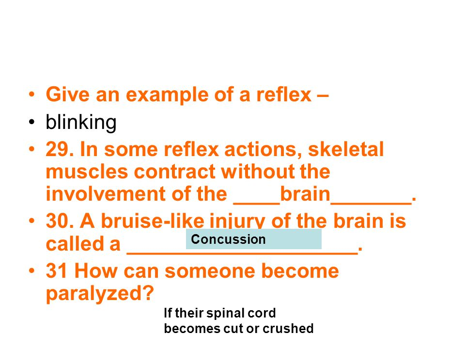Give an example of a reflex – blinking