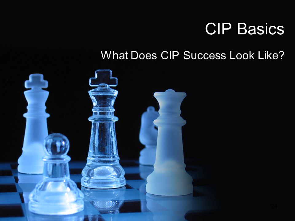 What Does CIP Success Look Like