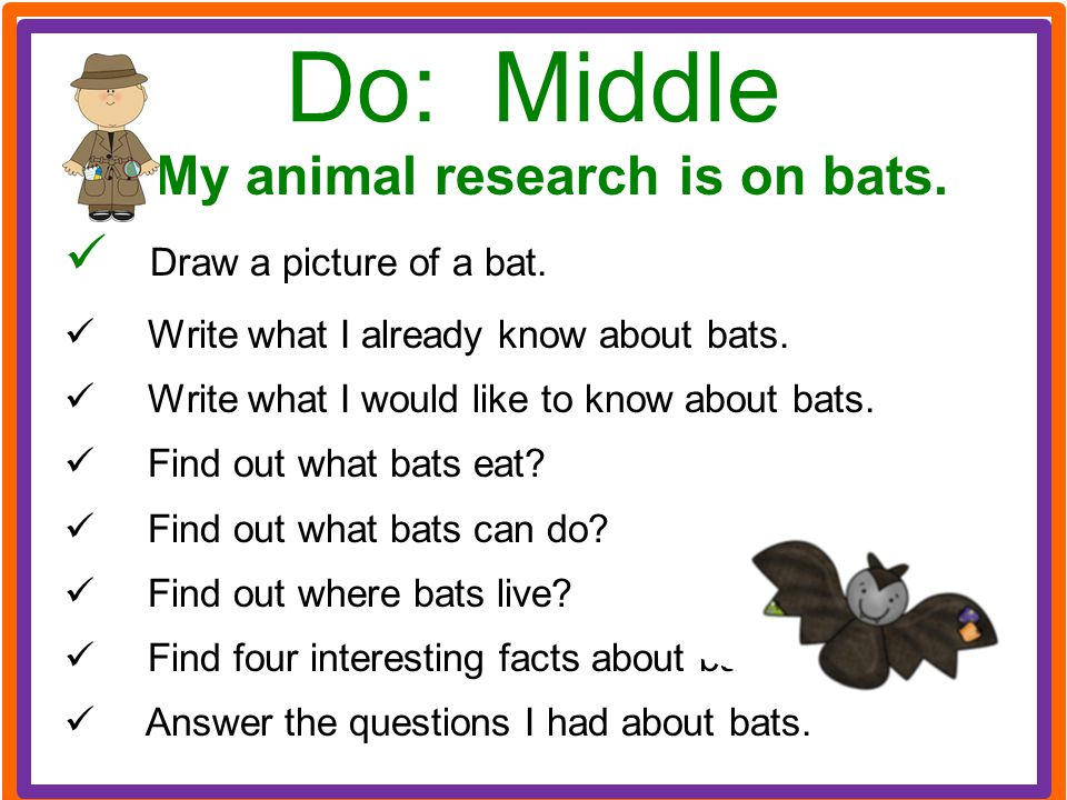 My animal research is on bats.